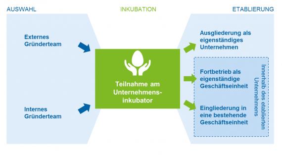 Innovationsförderung durch Unternehmensinkubatoren: Ein kritischer Blick in die Versicherungswirtschaft Verlauf der Inkubation