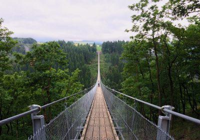Brücke / Zukunftsagenda