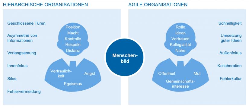 Hierarchische Organisationen vs. agile Organisationen / Agile Führung / BankingHub