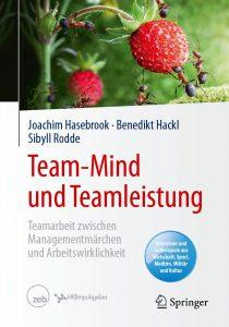 Buchcover: Team-Mind und Teamleistung / Springer Verlag