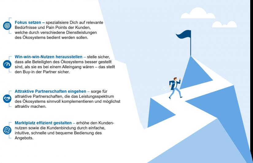 """Erfolgsfaktoren Ökosysteme in """"Ökosysteme – Definition und Empfehlungen"""""""