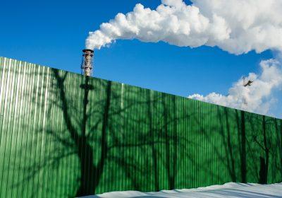 Grüner Zaun als Metapher für die Bedeutung von ESG für die Finanzbranche: Kriterien & Auswirkungen